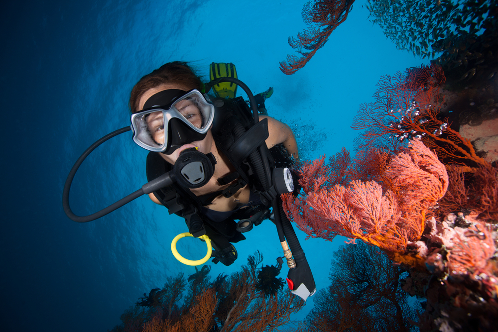 scuba dive refresher