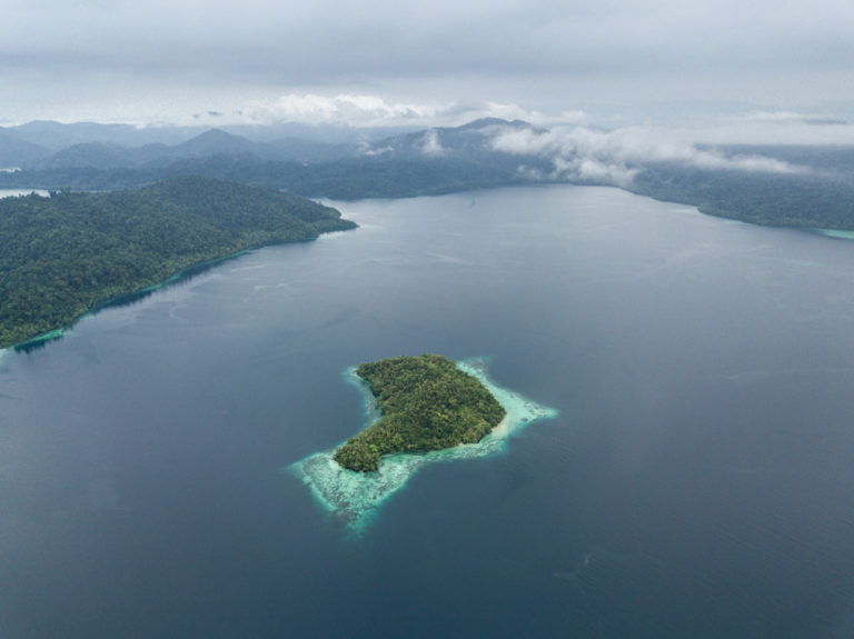 raja ampat diving cruises are in one of the most beautiful places in the world